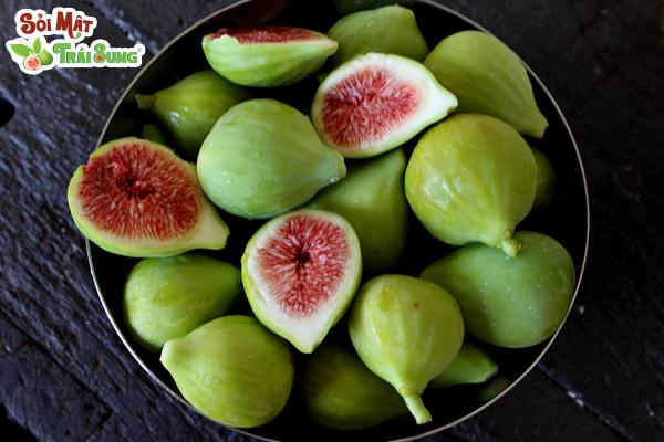 sỏi mật trái sung
