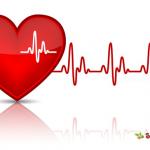 Sỏi mật làm tăng nguy cơ mắc các bệnh lý về tim mạch