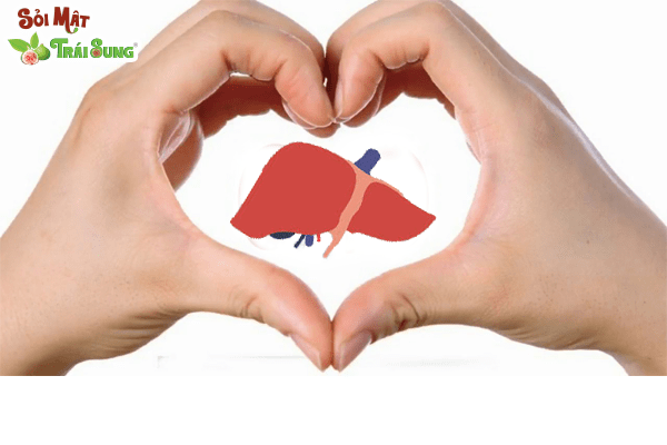 cách chữa bệnh sỏi gan