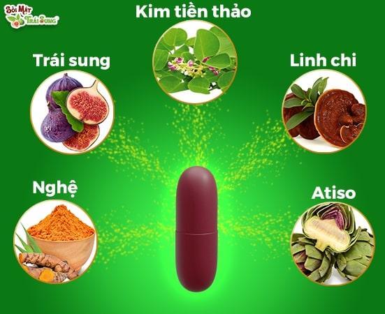 Sỏi Mật Trái Sung kết hợp nhiều nguyên liệu có công dụng giảm sỏi